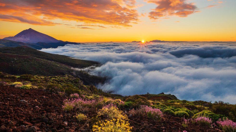 Erlebnisse auf dem Teide – Sterne, Wanderwege und Marslandschaften
