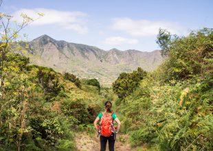 Wandern für Anfänger auf Teneriffa – die Kurzanleitung